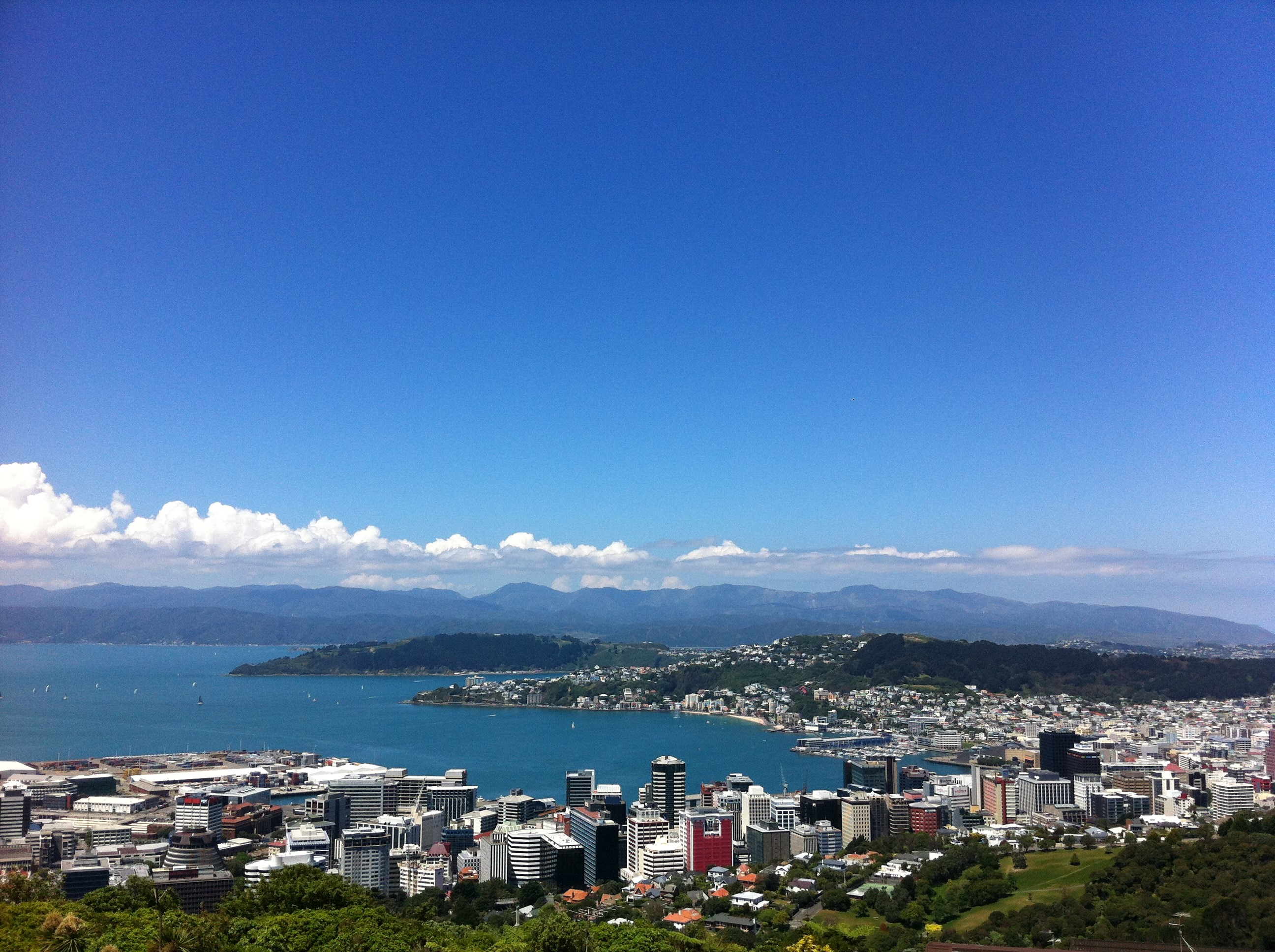 You cant beat Wellington on a good day